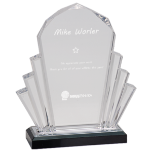 Silver Faceted Impress Award