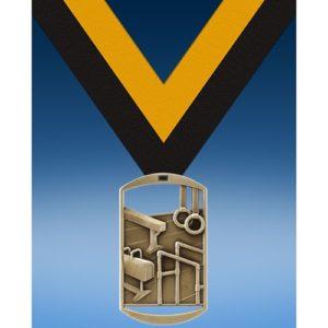 Gymnastics Male DT Medal