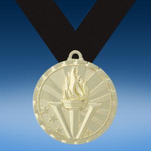 Victory GM Brite Medal-0