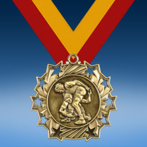 Wrestling Ten Star 3D Medal-0