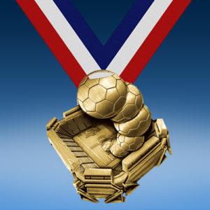 Soccer Stadium Medal