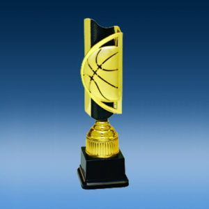 Basketball Triumph Completed Award