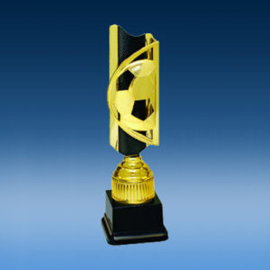 Soccer Triumph Completed Award